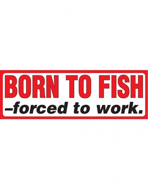 Born to Fish forced to.
