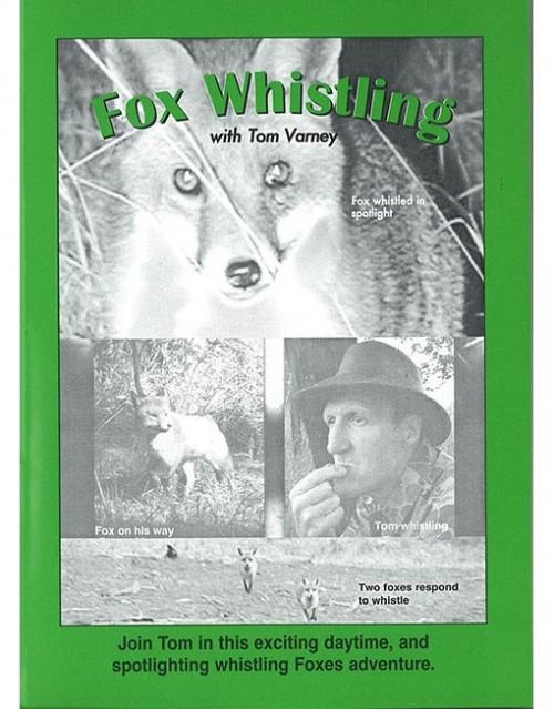 Fox Whistling WEB