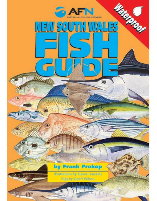 New south wales fish id guide nsw australian fishing network