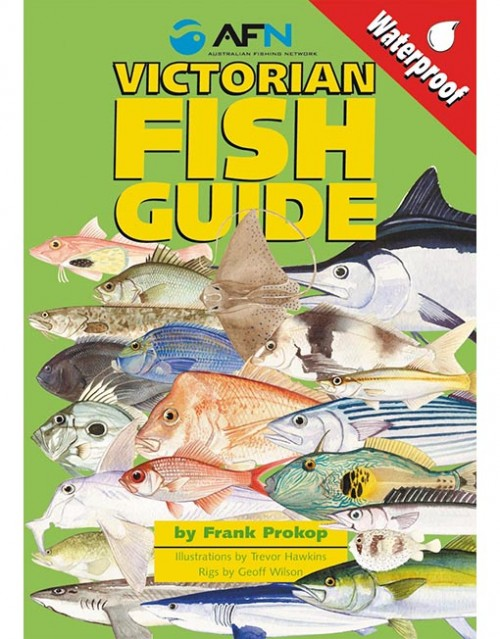 victorian fish id guide