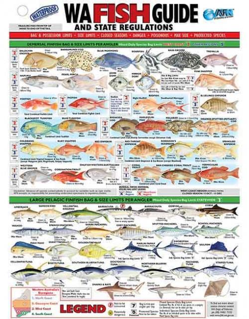 WA Fish ID Card front WEB