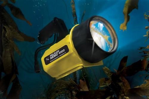 Pelican - Nemo 4100 - Underwater image - JPG - 03-17-2008