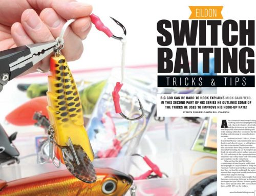 Eildon Switch Baiting Tricks & Tips!