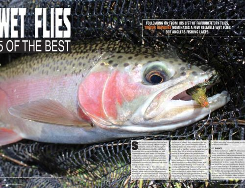 WET FLIES 5 OF THE BEST